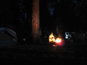 my home for the week: Upper Pines campground, site #142